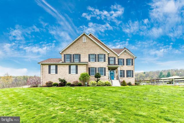 7923 Black Road, THURMONT, MD 21788 (#MDFR244754) :: The Gus Anthony Team