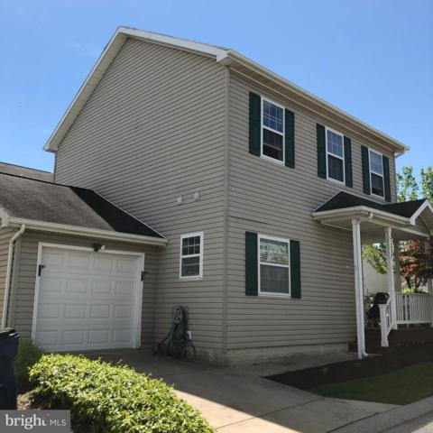 7300 Point Patience Way, ELKRIDGE, MD 21075 (#MDHW262120) :: The Miller Team