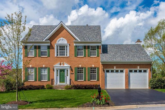 5586 Broadmoor Ter North Terrace, IJAMSVILLE, MD 21754 (#MDFR244770) :: ExecuHome Realty
