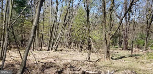 Lot 2-2234 Cold Springs Rd., ORRTANNA, PA 17353 (#PAAD106416) :: The Heather Neidlinger Team With Berkshire Hathaway HomeServices Homesale Realty