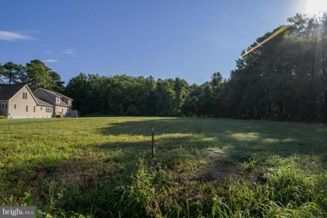 6939 Hopkins Neck Road, EASTON, MD 21601 (#MDTA135012) :: RE/MAX Coast and Country