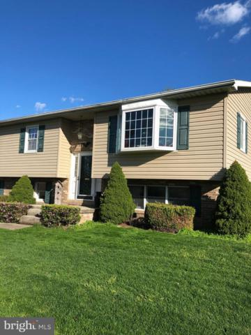 5390 Altenwald Road, WAYNESBORO, PA 17268 (#PAFL164956) :: The Heather Neidlinger Team With Berkshire Hathaway HomeServices Homesale Realty