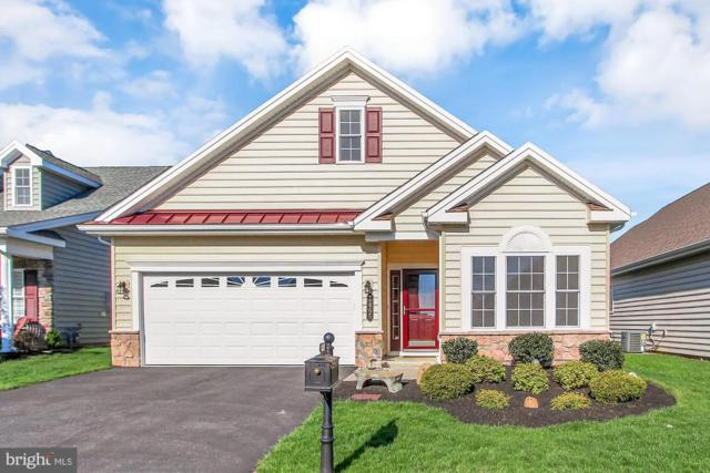 1465 Emerson Drive, MOUNT JOY, PA 17552 (#PALA131106) :: The Heather Neidlinger Team With Berkshire Hathaway HomeServices Homesale Realty