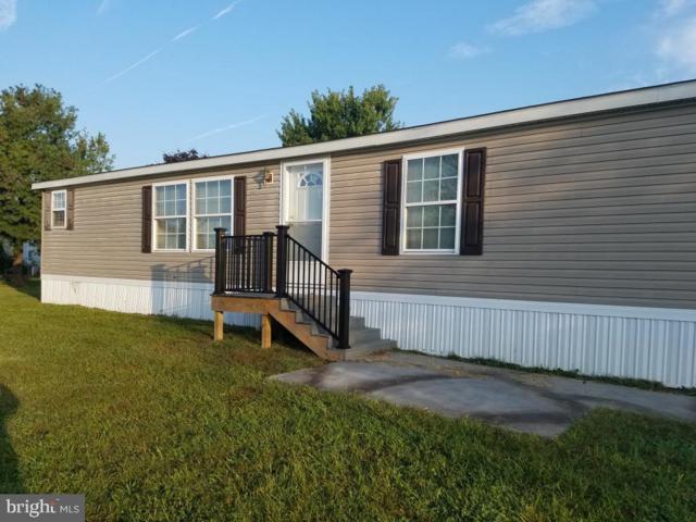 13 Willow Tree Lane, DOVER, PA 17315 (#PAYK115128) :: Liz Hamberger Real Estate Team of KW Keystone Realty