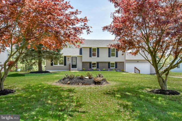 1308 Leeds Road, ELKTON, MD 21921 (#MDCC163648) :: Circadian Realty Group