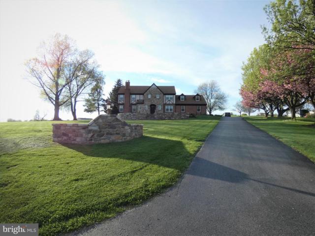 2465 Bluegrass Lane, RONKS, PA 17572 (#PALA131200) :: The Joy Daniels Real Estate Group