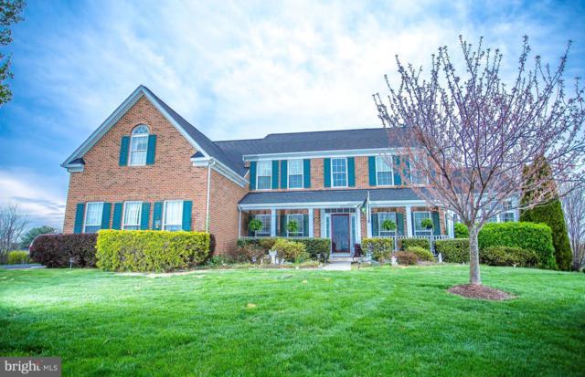 39084 Merak Court, HAMILTON, VA 20158 (#VALO381682) :: The Maryland Group of Long & Foster