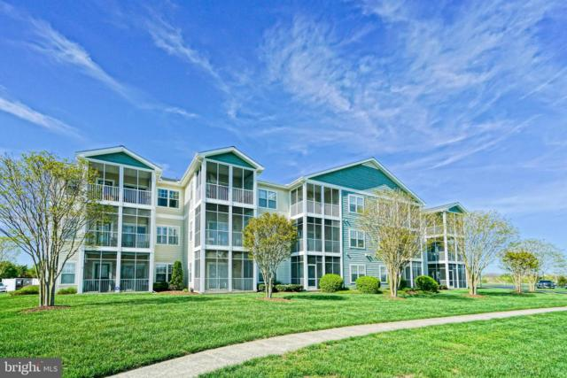 33156 N Village Loop #4202, LEWES, DE 19958 (#DESU139032) :: Shamrock Realty Group, Inc