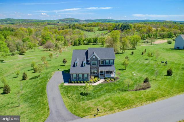 13200 Waterford View Court, LOVETTSVILLE, VA 20180 (#VALO381736) :: Great Falls Great Homes