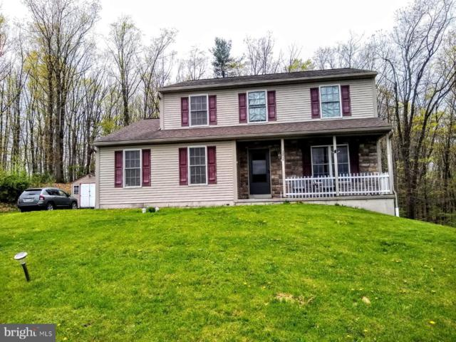 2 Woodland Vista Drive, PINE GROVE, PA 17963 (#PASK125390) :: Ramus Realty Group