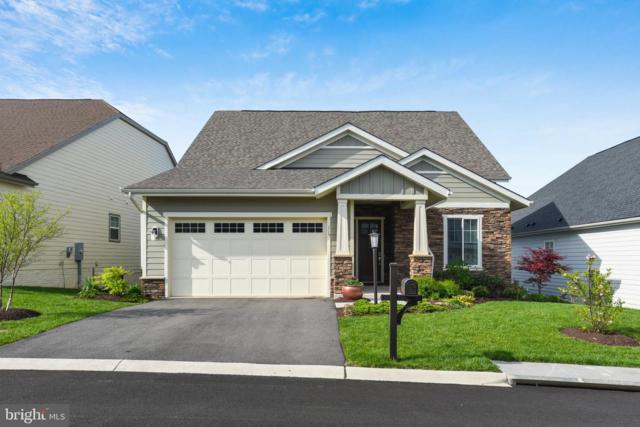 115 Cloak Lane, LAKE FREDERICK, VA 22630 (#VAFV150164) :: Keller Williams Pat Hiban Real Estate Group