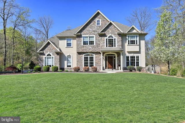 1381 Fox Hill Drive, PALMYRA, PA 17078 (#PALN106640) :: The Joy Daniels Real Estate Group