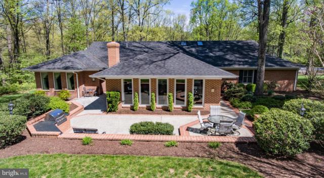 117 Old Forest Circle, WINCHESTER, VA 22602 (#VAFV150168) :: ExecuHome Realty