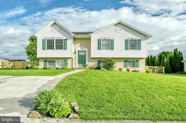 356 Lexington Way, LITTLESTOWN, PA 17340 (#PAAD106490) :: The Heather Neidlinger Team With Berkshire Hathaway HomeServices Homesale Realty