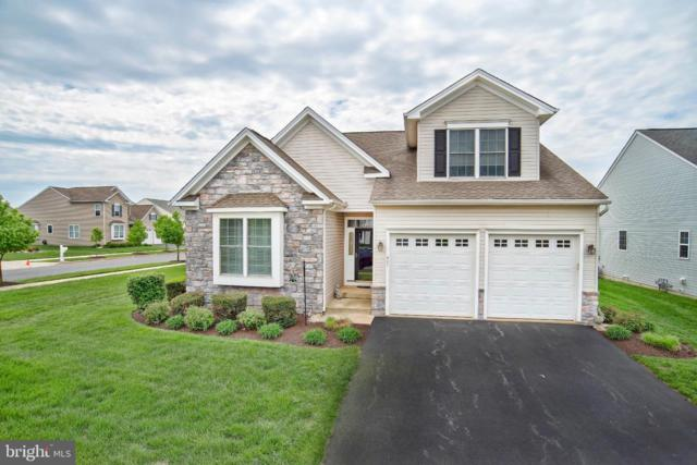 401 Topiary Lane, MIDDLETOWN, DE 19709 (#DENC476900) :: Brandon Brittingham's Team