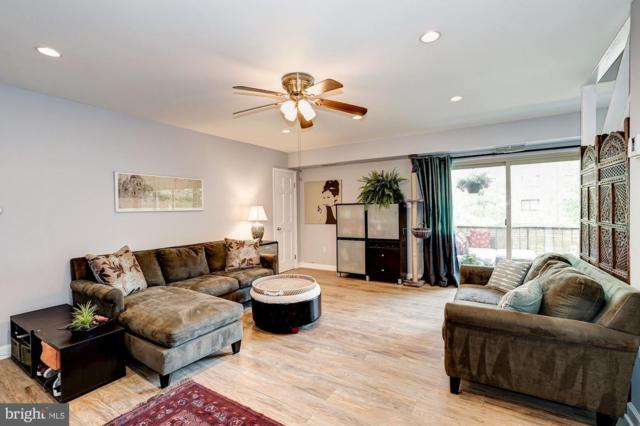 8612 Manchester Road #8, SILVER SPRING, MD 20901 (#MDMC655180) :: Shamrock Realty Group, Inc