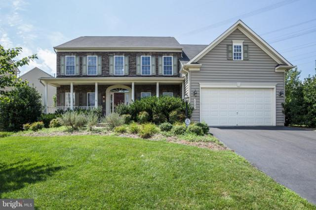 25643 Laughter Drive, ALDIE, VA 20105 (#VALO382142) :: The Miller Team