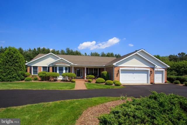 8595 Orchard Drive, CHESTERTOWN, MD 21620 (#MDKE115012) :: ExecuHome Realty