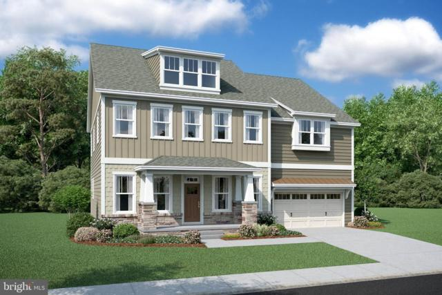 41003 River Cane Place, ALDIE, VA 20105 (#VALO382246) :: The Piano Home Group