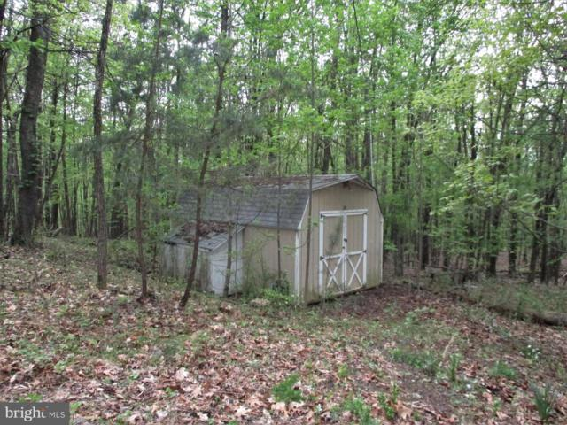 Gaither Rd, GREAT CACAPON, WV 25422 (#WVMO115232) :: Dart Homes