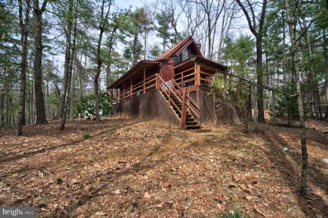 80 Yellow Pine Lane, MOUNT JACKSON, VA 22842 (#VASH115726) :: Great Falls Great Homes