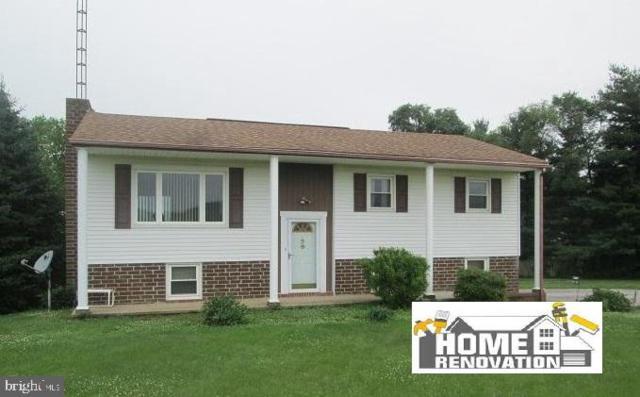12054 Mount Olivet Road, FELTON, PA 17322 (#PAYK115690) :: Liz Hamberger Real Estate Team of KW Keystone Realty
