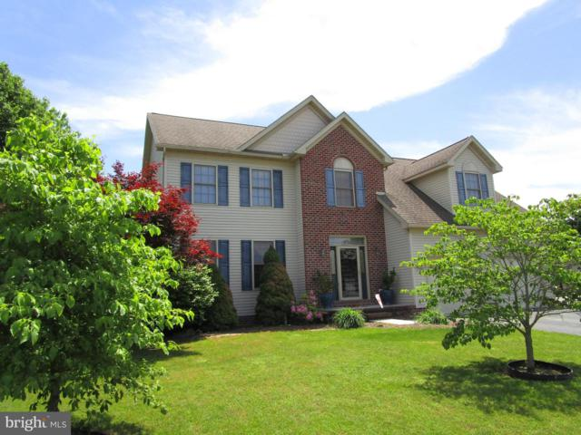 420 Monocacy Trail, SPRING GROVE, PA 17362 (#PAYK115712) :: ExecuHome Realty