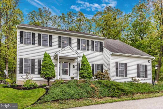 14 Deep Powder Trail, FAIRFIELD, PA 17320 (#PAAD106582) :: ExecuHome Realty