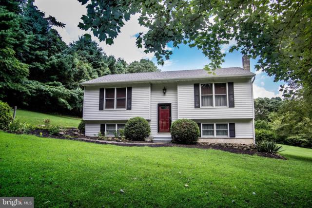 1761 Doctor Jack Road, CONOWINGO, MD 21918 (#MDCC163788) :: Network Realty Group