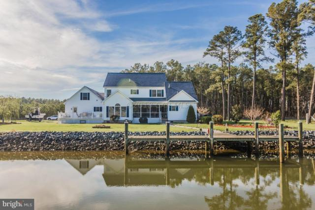 5115 Thomas Long Road, CRISFIELD, MD 21817 (#MDSO102168) :: The Miller Team