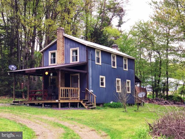53 Log House Lane, ICKESBURG, PA 17037 (#PAPY100778) :: Liz Hamberger Real Estate Team of KW Keystone Realty