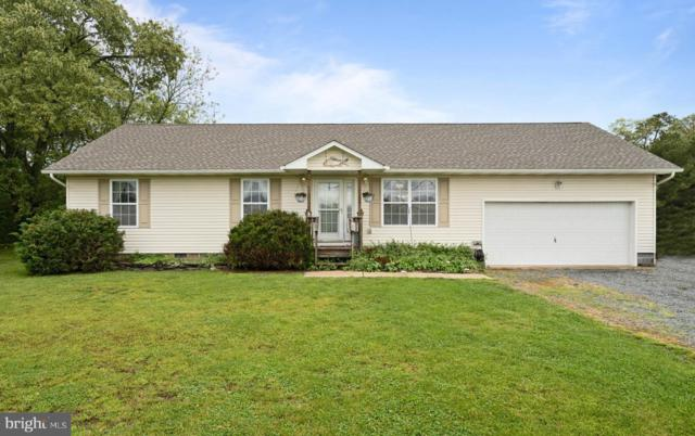 29555 Piney Neck Road, DAGSBORO, DE 19939 (#DESU139550) :: CoastLine Realty