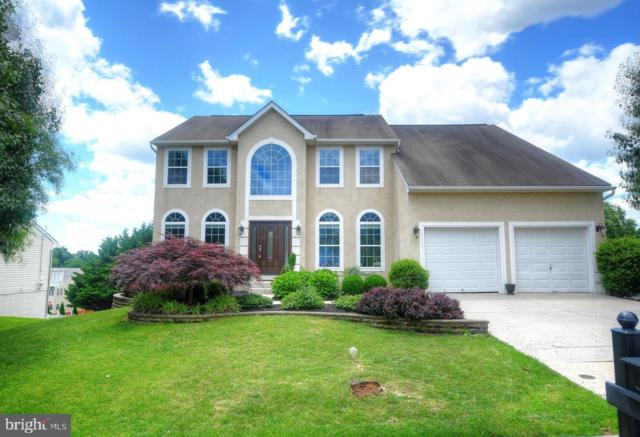 501 Lighthouse Drive, PERRYVILLE, MD 21903 (#MDCC163854) :: Network Realty Group