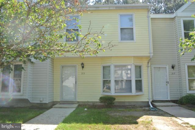 315 Jo Anns Way, SALISBURY, MD 21804 (#MDWC103152) :: Barrows and Associates