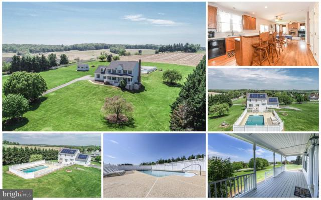 11333 Nevets Place, MONROVIA, MD 21770 (#MDFR245672) :: Charis Realty Group