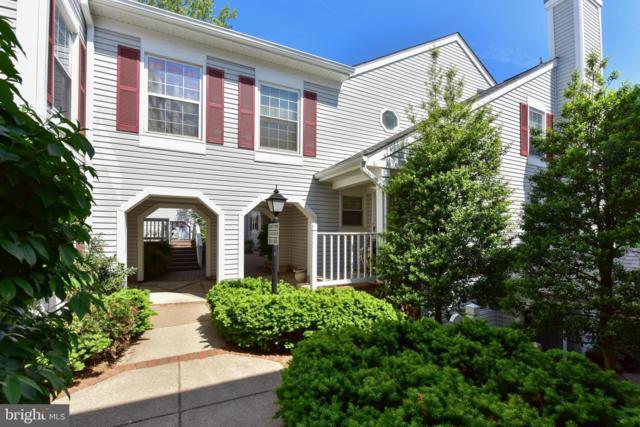 2915-E S Woodstock Street #5, ARLINGTON, VA 22206 (#VAAR148666) :: Shamrock Realty Group, Inc