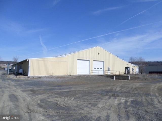 17 Pinedale Industrial Road, ORWIGSBURG, PA 17961 (#PASK125566) :: The Heather Neidlinger Team With Berkshire Hathaway HomeServices Homesale Realty