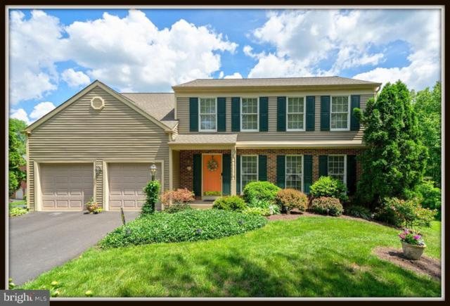 13 Oakbrook Court, STAFFORD, VA 22554 (#VAST210278) :: Cristina Dougherty & Associates