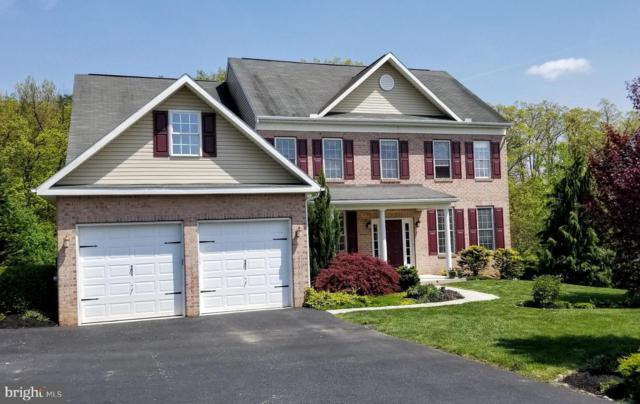 7946 Golf Vista Drive, GREENCASTLE, PA 17225 (#PAFL165344) :: ExecuHome Realty