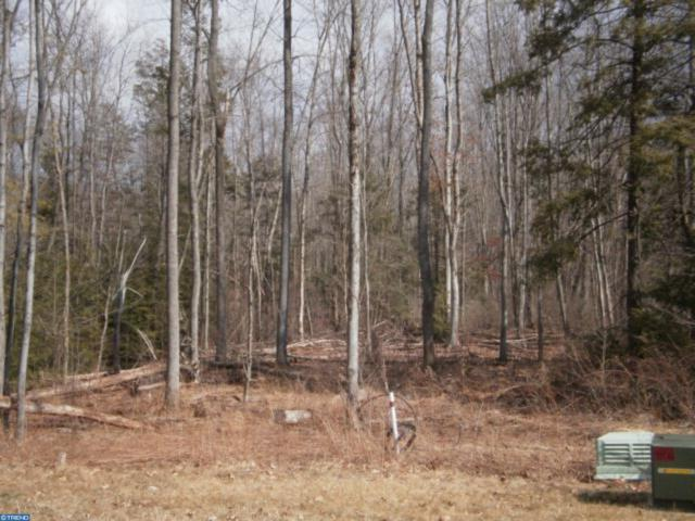 Lot #25 Cedar Creek Drive, BUTLER TWP, PA 17921 (#PASK125596) :: ExecuHome Realty