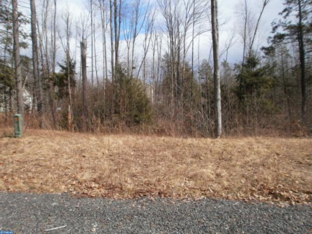 Lot #36 Cedar Creek Drive, BUTLER TWP, PA 17921 (#PASK125600) :: ExecuHome Realty