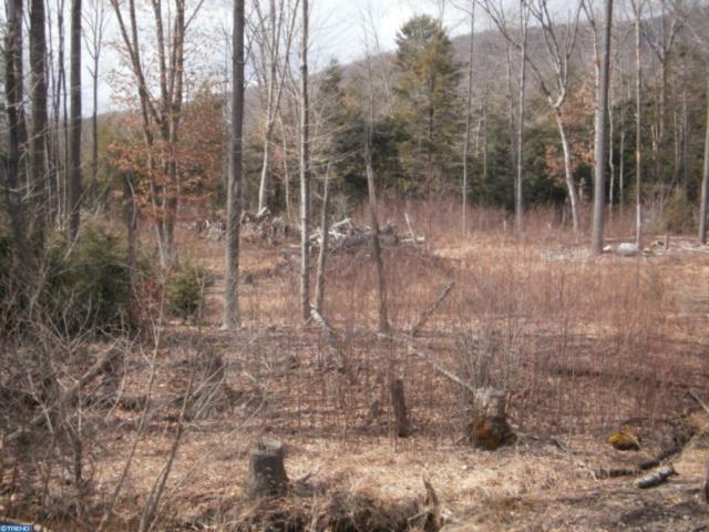 Lot #20 Cedar Creek Drive, ASHLAND, PA 17921 (#PASK125604) :: The Heather Neidlinger Team With Berkshire Hathaway HomeServices Homesale Realty
