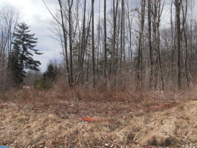 Lot 17 Cedar Creek Drive, ASHLAND, PA 17921 (#PASK125606) :: The Heather Neidlinger Team With Berkshire Hathaway HomeServices Homesale Realty
