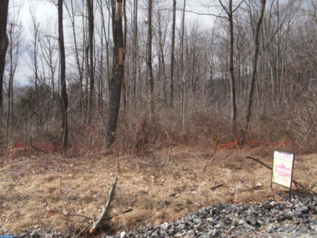 Lot 16 Cedar Creek Drive, ASHLAND, PA 17921 (#PASK125608) :: The Joy Daniels Real Estate Group