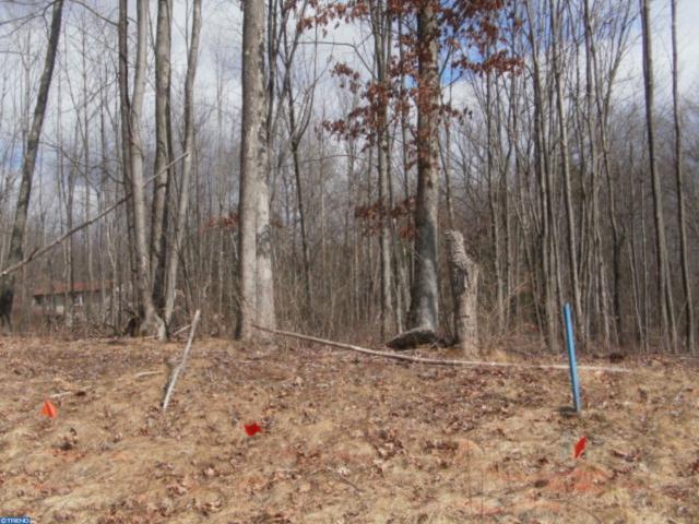 Lot 14 Cedar Creek Drive, BUTLER TWP, PA 17921 (#PASK125610) :: The Joy Daniels Real Estate Group