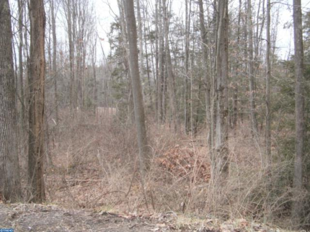 Lot #29 Academy Lane, BUTLER TWP, PA 17921 (#PASK125616) :: The Joy Daniels Real Estate Group
