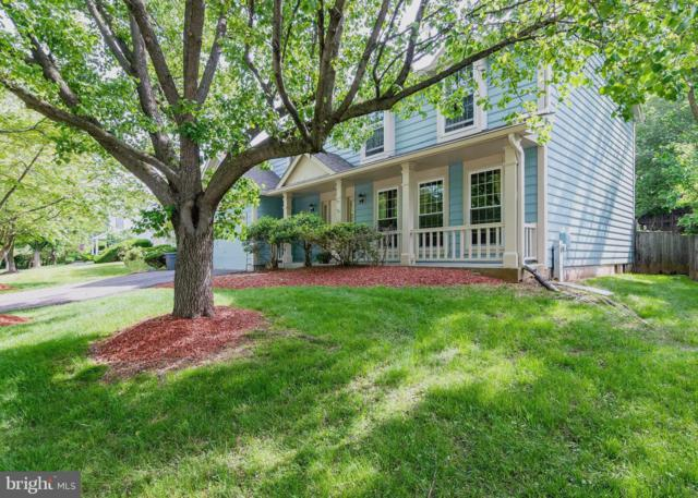 6093 Watch Chain Way, COLUMBIA, MD 21044 (#MDHW263106) :: Shamrock Realty Group, Inc