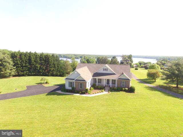 976 Oak Grove Drive, MINERAL, VA 23117 (#VALA119054) :: Bruce & Tanya and Associates