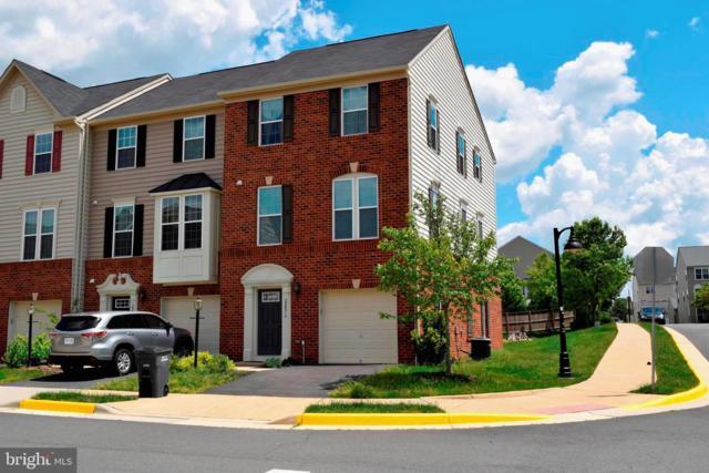 22876 Chestnut Oak Terrace, STERLING, VA 20166 (#VALO382948) :: Advance Realty Bel Air, Inc