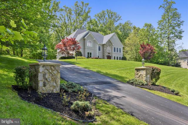 11309 Stonehouse Place, POTOMAC FALLS, VA 20165 (#VALO383014) :: Great Falls Great Homes